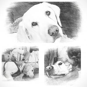 Oliver Quast collage