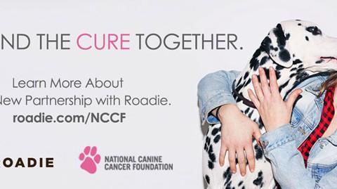 Roadie and NCCF-03