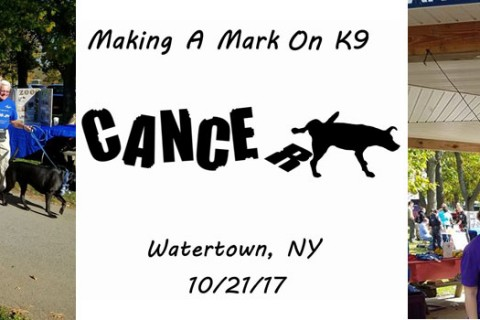 Making A Mark on K9