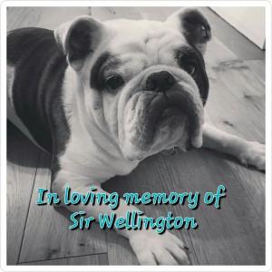 Sir Wellington Laguerder