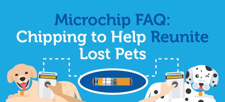 Microchip FAQ: Chipping to Help Reunite Lost Pets