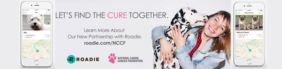 Roadie App Helps Canine Cancer Patients Get to Vet Appointments
