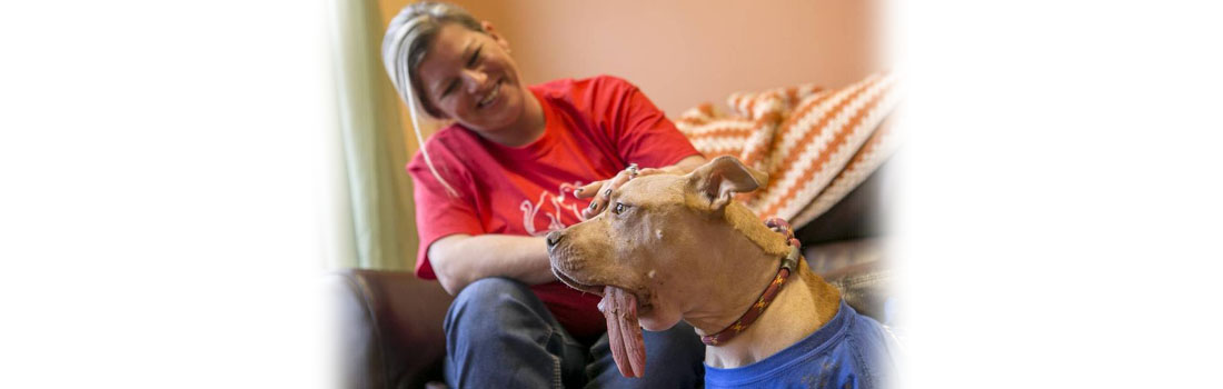 Her foster dog had cancer, but she never gave up hope. Now, the dog is healthy.