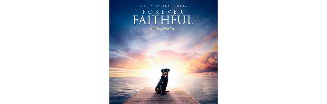 Forever Faithful Documentary Film About Canine Cancer
