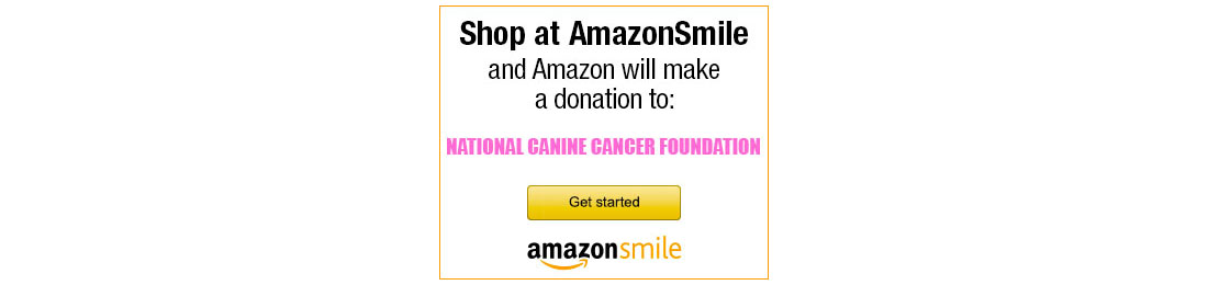 Amazon Prime Day Coming July 16 – Help NCCF get donations by using Amazon Smile!