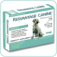 LONGEVITY SUPPLEMENT FOR DOGS