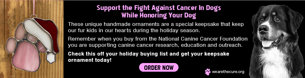 Support the fight against cancer in dogs