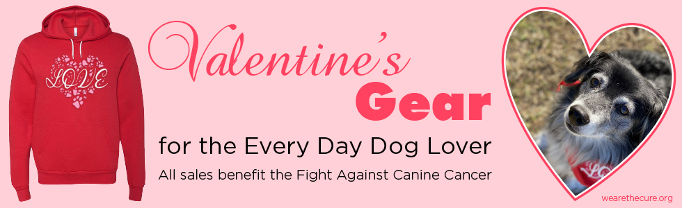 Valentine's t-shirt with dog nose print and cute border collie