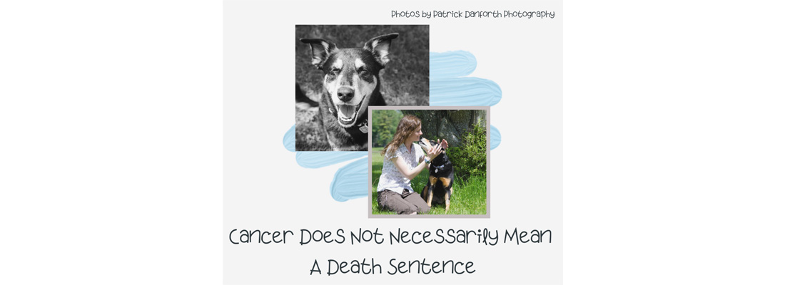 Cancer Does Not Necessarily Mean A Death Sentence