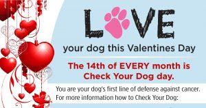 Check your dog