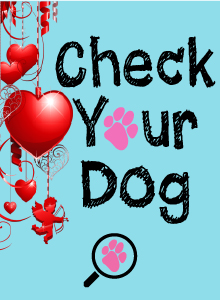 Check Your Dog monthly, it is important!