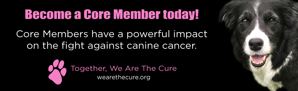 Become a Core Member today!