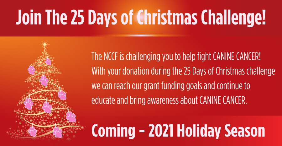 25 Days of Christmas Fundraiser for NCCF