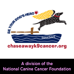Chase Away K-9 Cancer