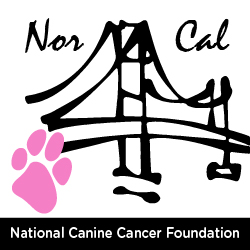 Northern California Chapter of the National Canine Cancer Foundation