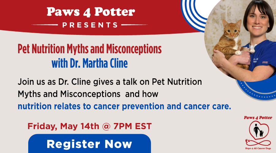 Paws 4 Potter Nutrition Myths and Misconceptions