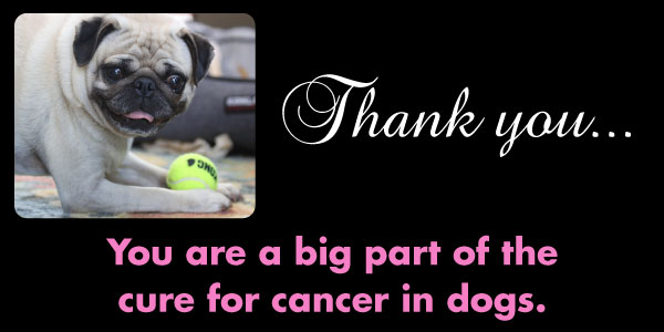 Core Members are important to the fight against dog cancer